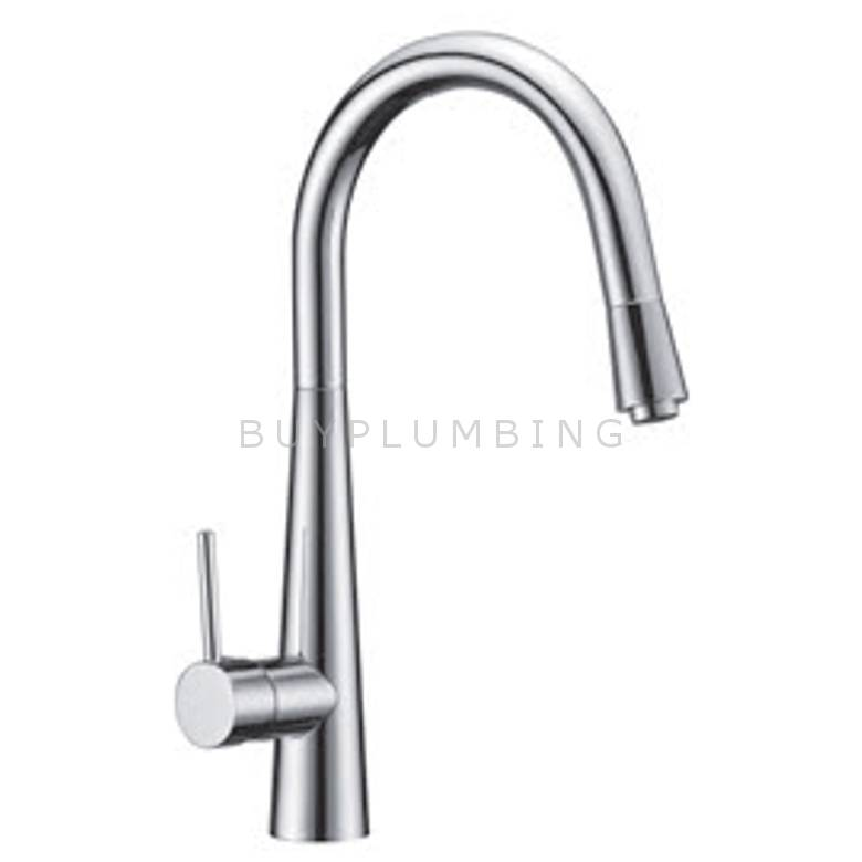 Hygienic Bathrooms Pull Out Kitchen Sink Mixer (1011)