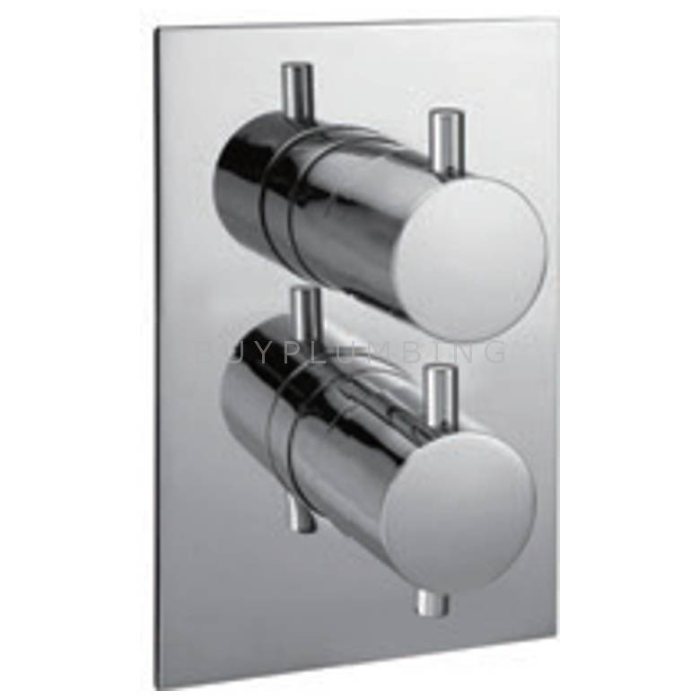 Hygienic Bathrooms Single Outlet Concealed Thermostatic Mixer Valve With Lever Handles