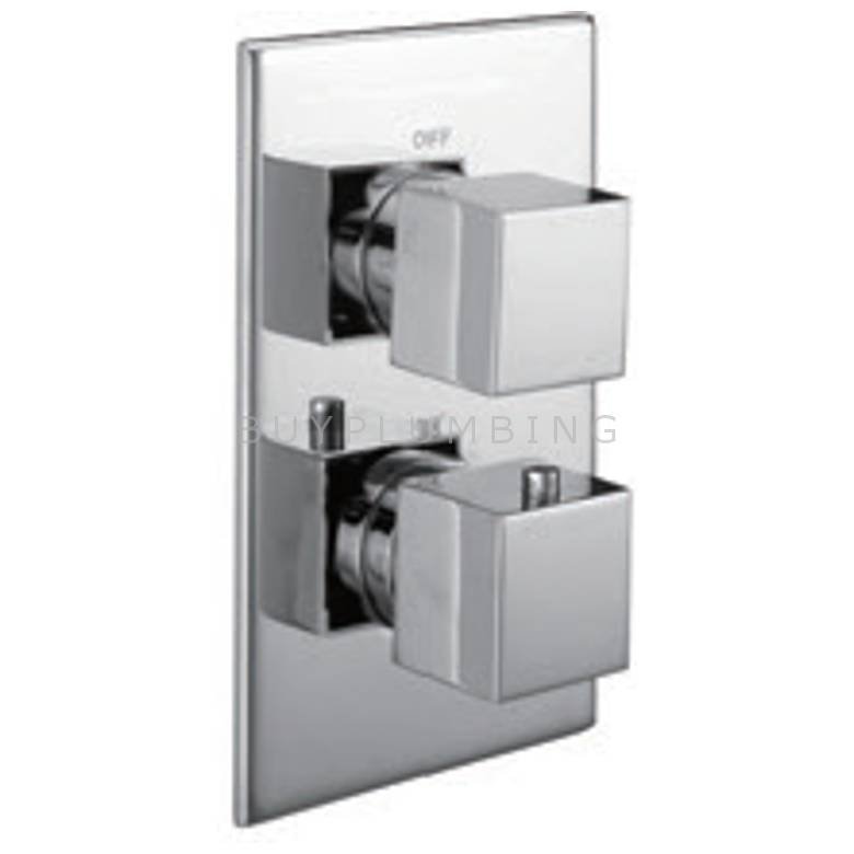 Hygienic Bathrooms Single Outlet Concealed Thermostatic Mixer Valve With Square Handles